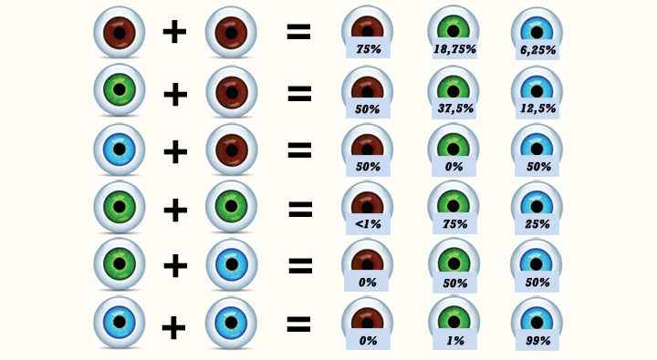 oogkleur berekenen